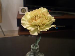 20110304flower.jpg