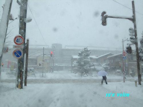 snow2_20120126002436.jpg