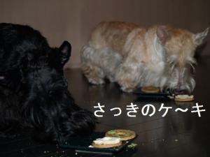 ♪ケ~キ食べるよ~♪