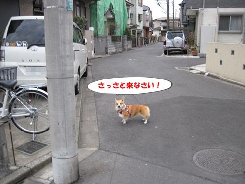 IMG_3317.jpg
