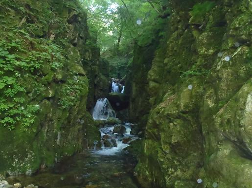 6m2条滝