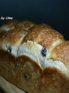 20090725黒豆食パン01