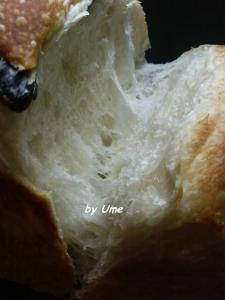 20090725黒豆食パン02