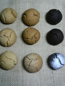 20090928ほろほろクッキー達