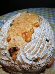 20111023ブルーベリーとチーズのカンパbyプルーン酵母0