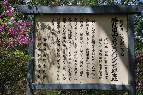 勝間田山4