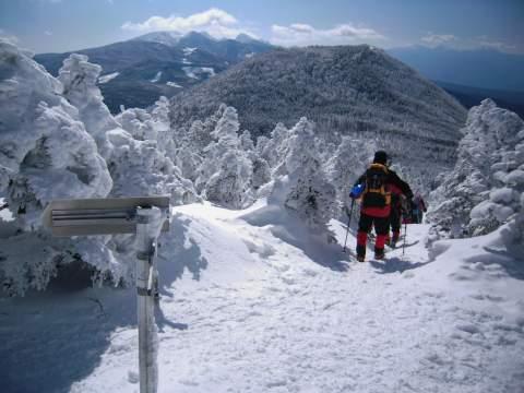 茶臼山に向かう道