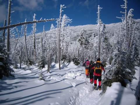 茶臼山を下山