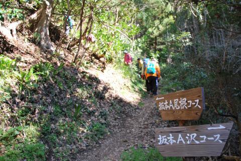 尾根コースを登る