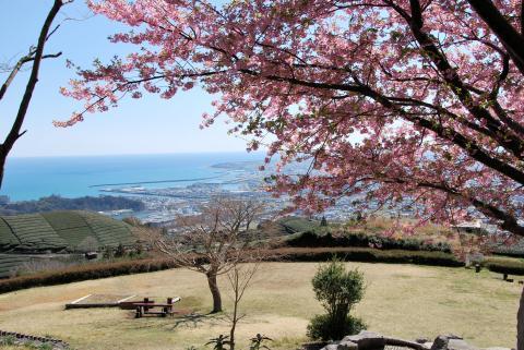 笛吹段公園と焼津港