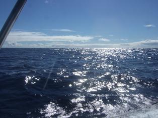 still easy sailing3
