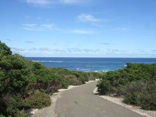 seal bay ahead