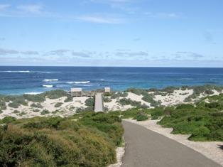 seal bay ahead2