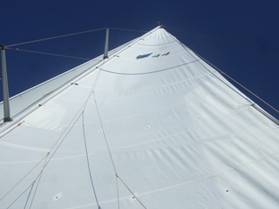 good looking mainsail