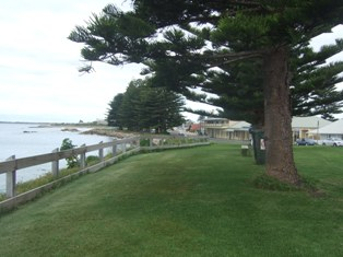 around the marina