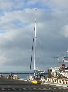 tied up the wharfe