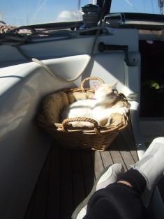 sun bathing momo