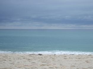lavinia beach
