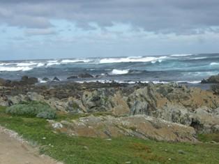 roaring coastline