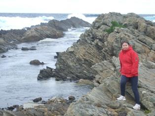 stokes point shoreline3