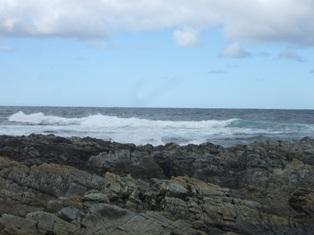 stokes point shoreline2