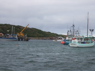 harbour2_20110505164127.jpg