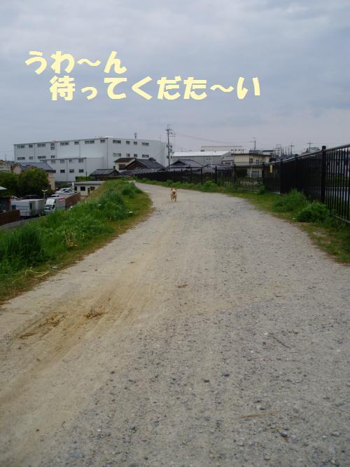 001_convert_20110426234617.jpg