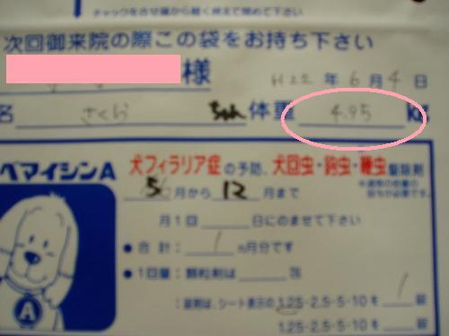 001_convert_20110502141813.jpg