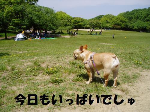001_convert_20110510002906.jpg