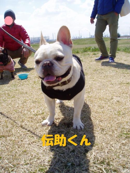 002_convert_20110328011223.jpg