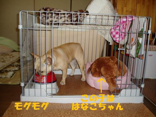 002_convert_20110331003009.jpg