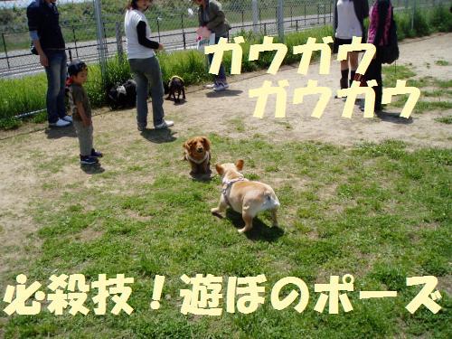 002_convert_20110516005336.jpg
