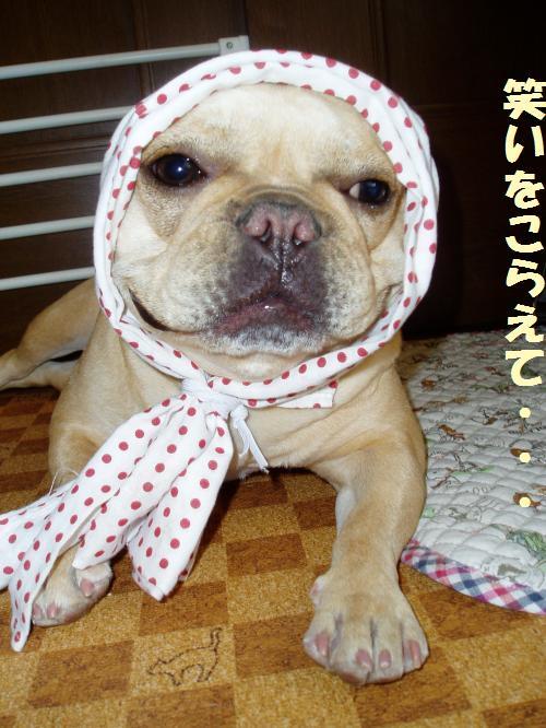 003_convert_20110505000036.jpg