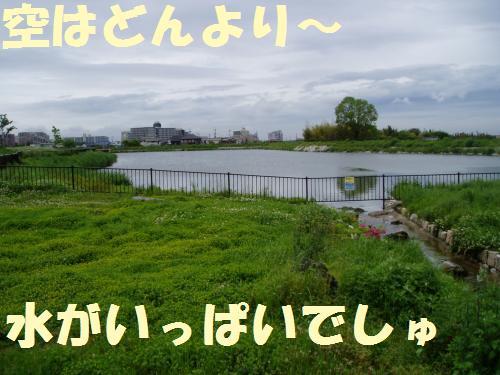 003_convert_20110512234825.jpg