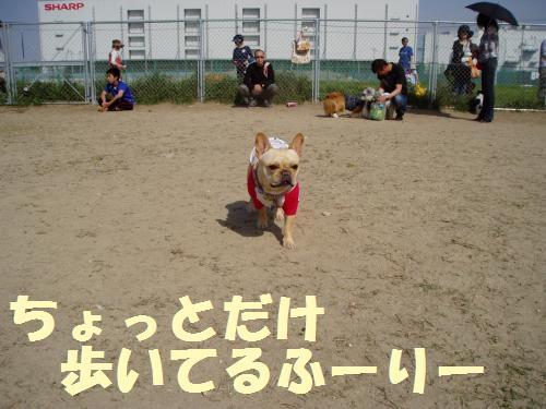 004_convert_20110506225357.jpg