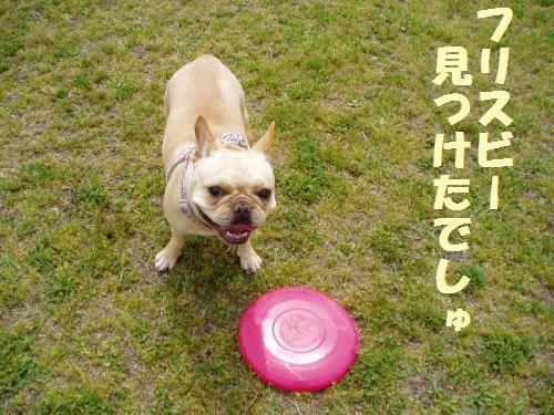 004_convert_20110512014259.jpg
