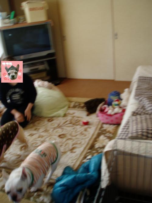 006_convert_20110405005443.jpg