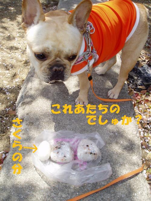 006_convert_20110413013840.jpg