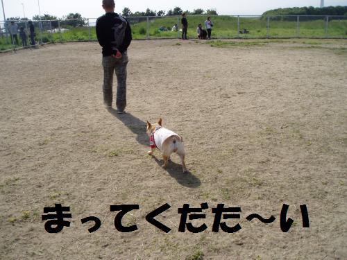 006_convert_20110506225525.jpg