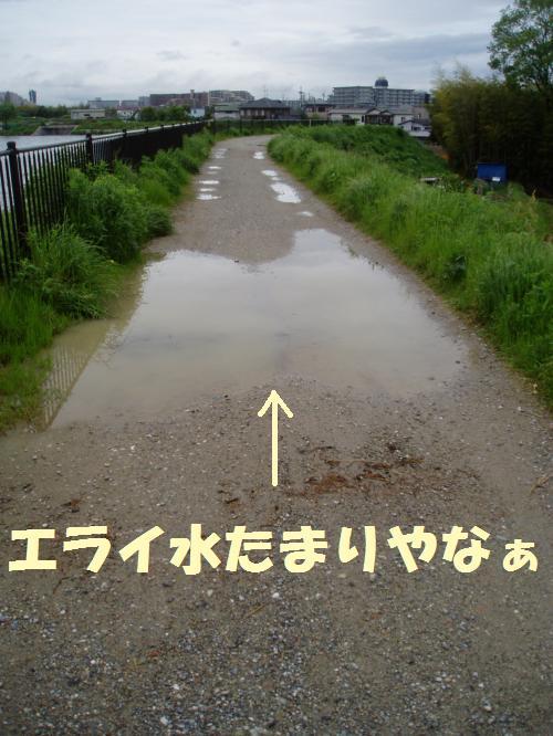 006_convert_20110512235035.jpg