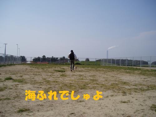 008_convert_20110331003359.jpg