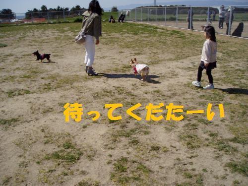 008_convert_20110407015443.jpg