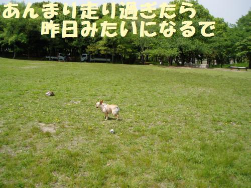 009_convert_20110510003444.jpg