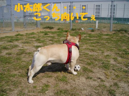 010_convert_20110331003511.jpg