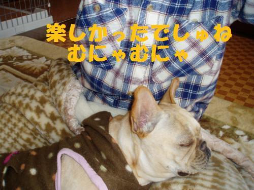 010_convert_20110405005731.jpg