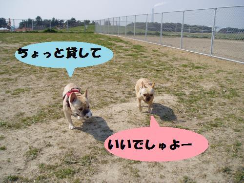 011_convert_20110331003547.jpg