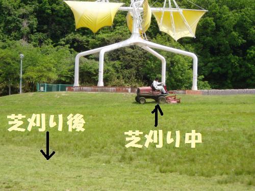 013_convert_20110510003707.jpg