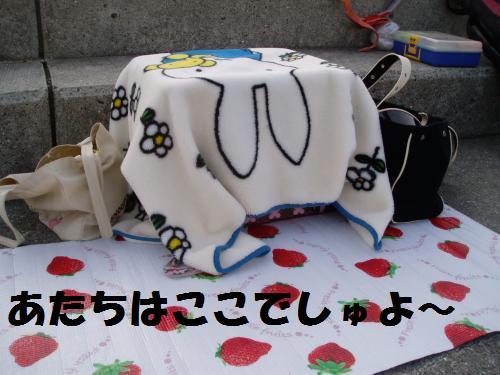 017_convert_20110506230058.jpg