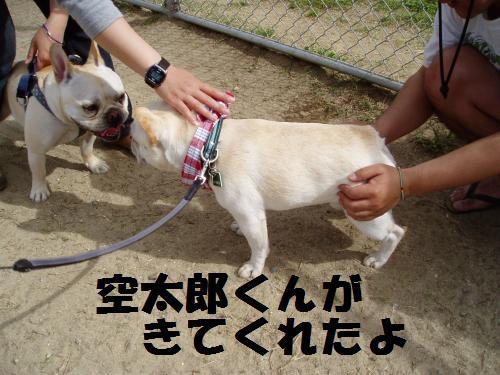017_convert_20110508041609.jpg