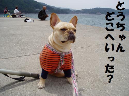 026_convert_20110506230347.jpg